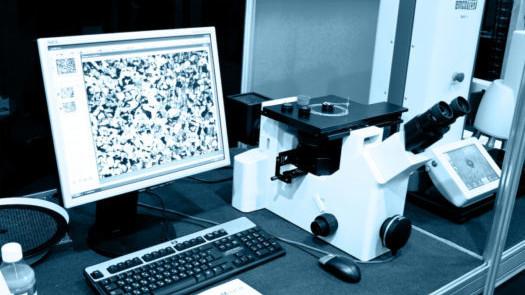 lab analysis medidee, Medidee medical services